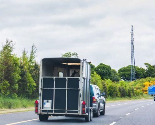 Horse trailer being towed on motorway