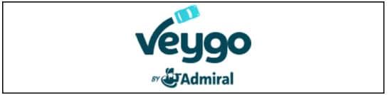 Veygo Logo